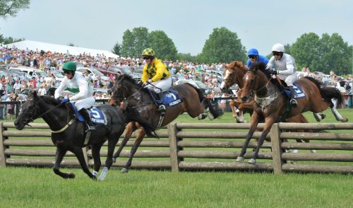Virginia Gold Cup